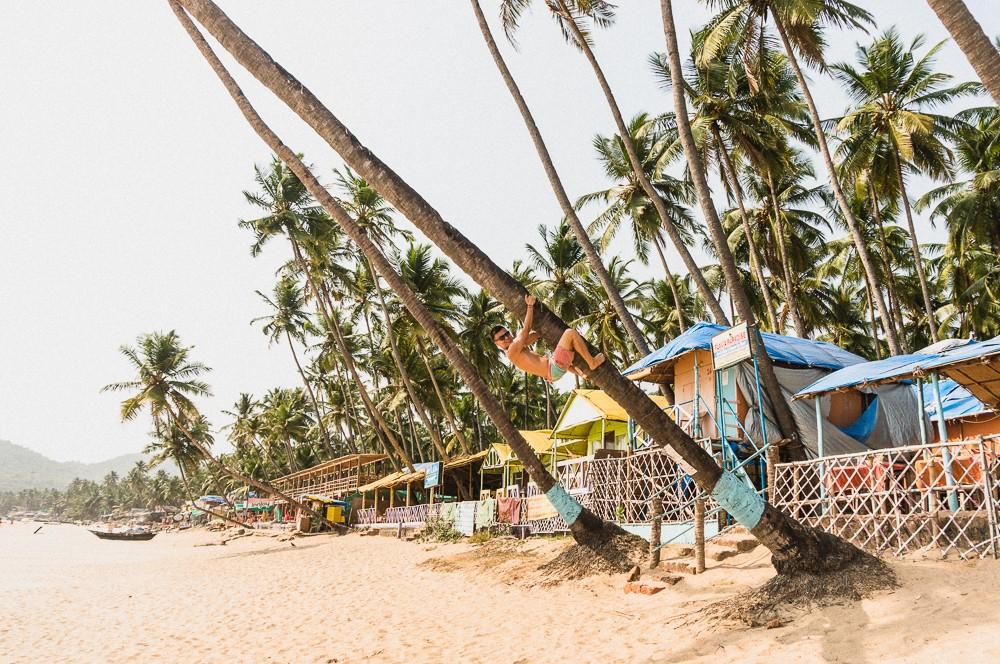Climbing Tree on Palolem Beach Goa India