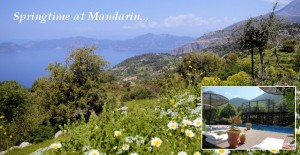 Kabak Turtasi – Courgette (Zucchini) Loaf from the Mandarin Boutique Hotel