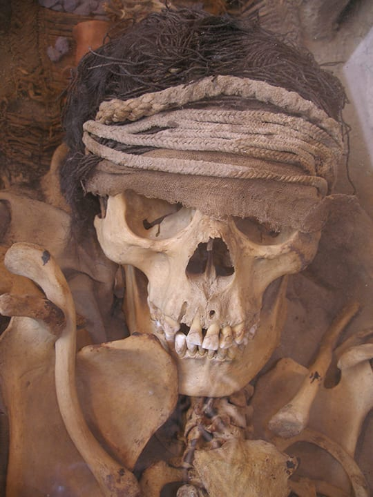 Mummy From the Lima Culture by Thomas Quine