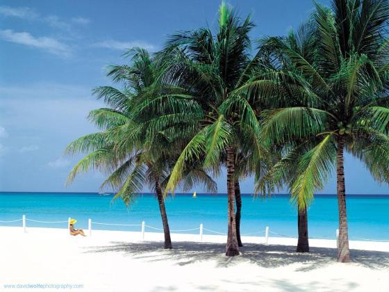 Beach photo Creative Commons