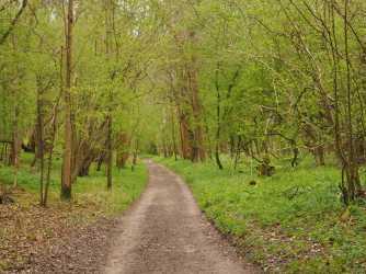 Warburg-Nature-Reserve,-Maidensgrove
