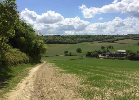 Andridge-Common,-Stokenchurch