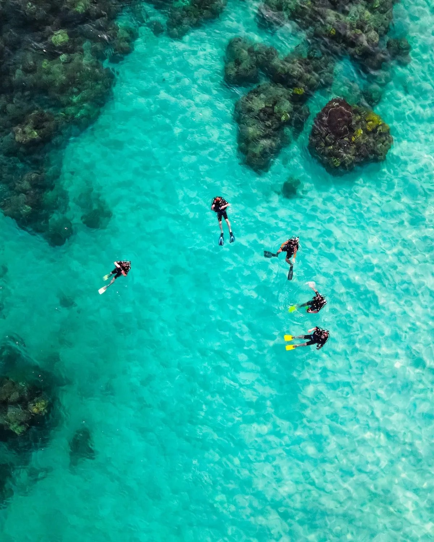 Tioman-Malaysia-Divers-in-Sea