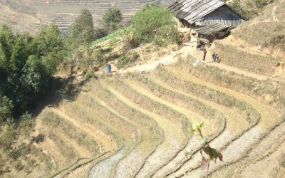 Sapa: A 19th-century French hill station surrounded by spectacular rice terrace farms