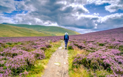 We did it our Cumbria Way: Part II