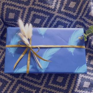 Bluebird Feather Gift Wrap