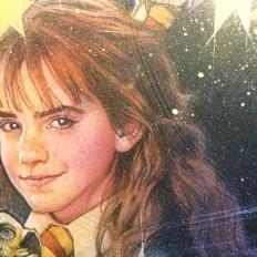 Harry Potter - Struzan Detail