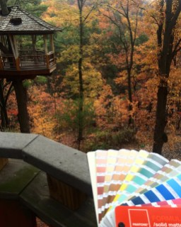 pantone book and trees