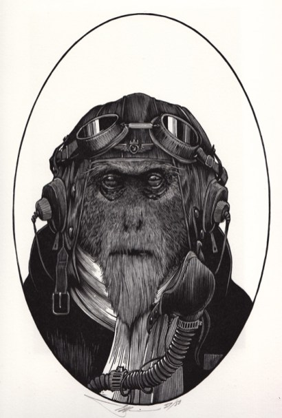 The King of the Winged Monkeys