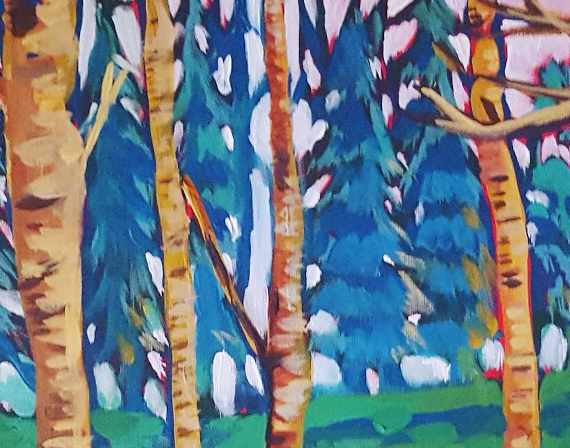 A closeup of the forest