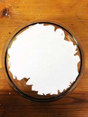 Sibio Plaster Top