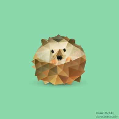 diana-dachille-dianas-animals-hedgehog