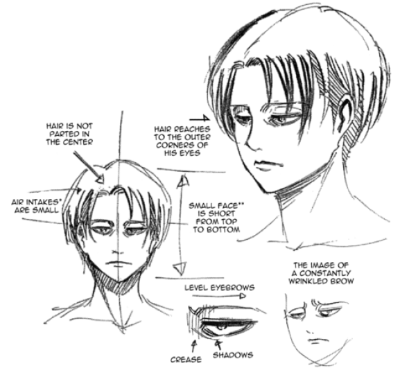 Levi Ackerman Isayama character notes