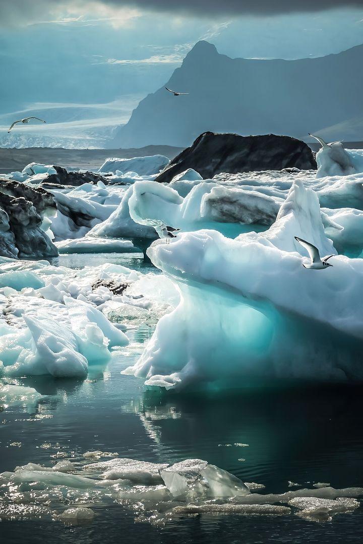 Glacier Glow - Jokulsarlon, Glacier Lagoon, Iceland