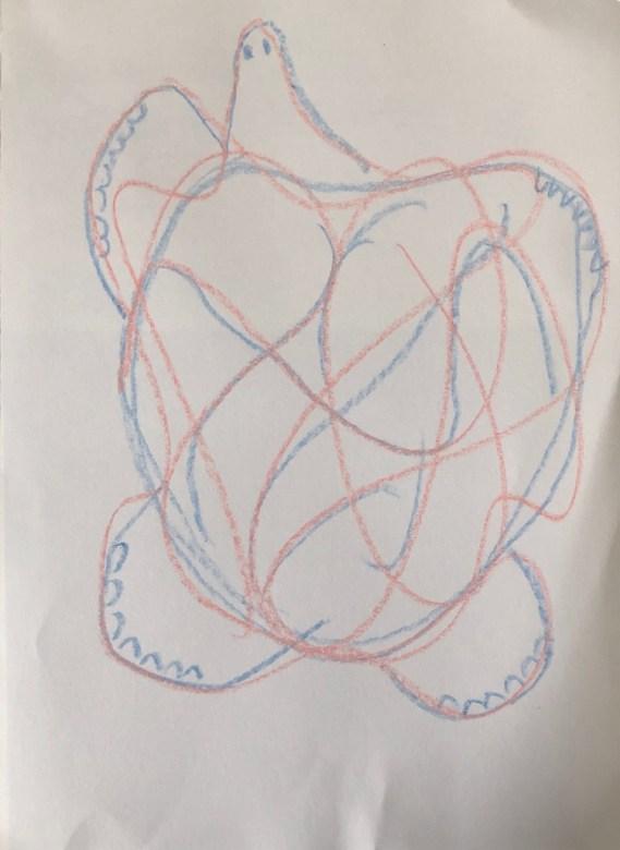 Turtle Scribble Drawing