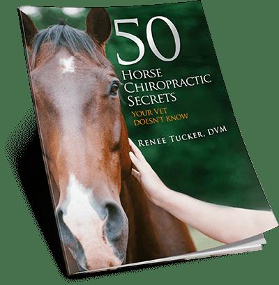 50HorseSecretsEbook