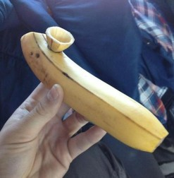 The Infamous Bananna Pipe