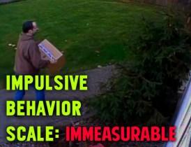 Impulsive Behavior Scale__Where Excuses Go to Die