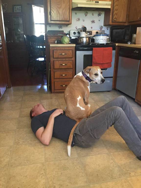 Cheapest way to travel: show TrustedHousesitters you care about your pets