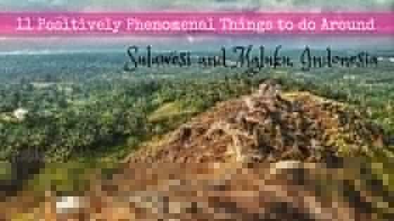 things to do around sulawesi