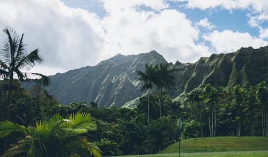 12-11-28-oahu-hawaii-00026.jpg