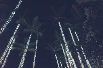12-11-29-oahu-hawaii-00200.jpg