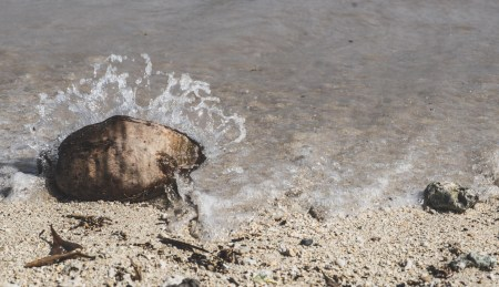 12-11-30-oahu-hawaii-00218.jpg