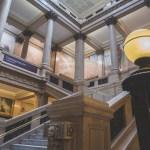 In Focus | Carnegie Museum