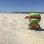 Day 3 | Coronado Beach Day
