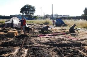 occupythefarm.org