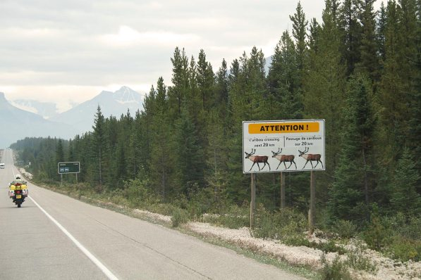Heading south in the canadian rockies