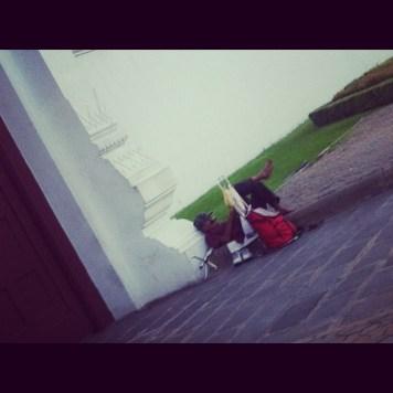 odpoczynek pod Pałacem....