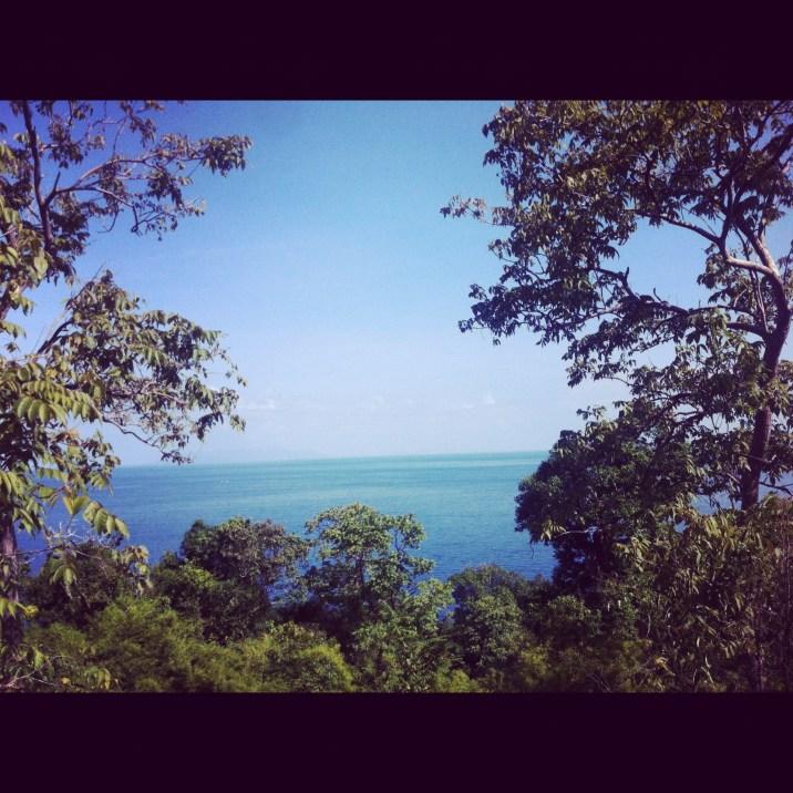 widoki z dżungli w Adang