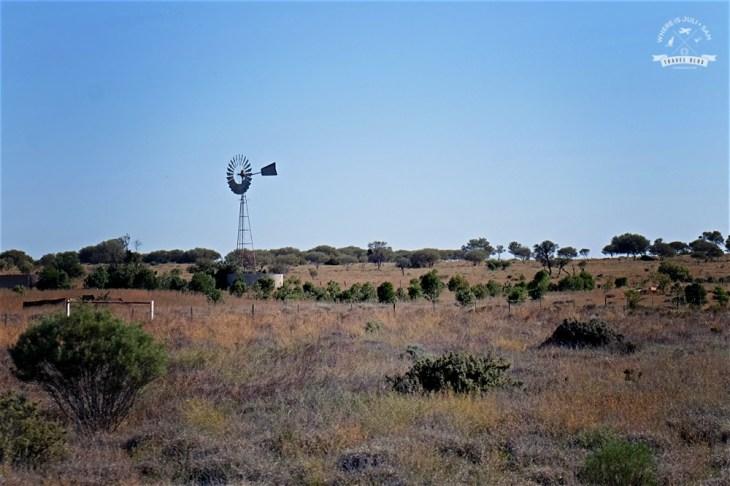 młyn na Outbacku