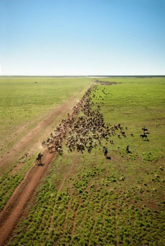 Ciekawostki o Australii Outback wiosna