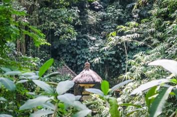Widok-z-okna-na-Bali