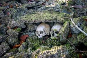 Ludzkie czaszki na wyspach Salomona
