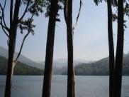munnar kerala tourism pictures 16
