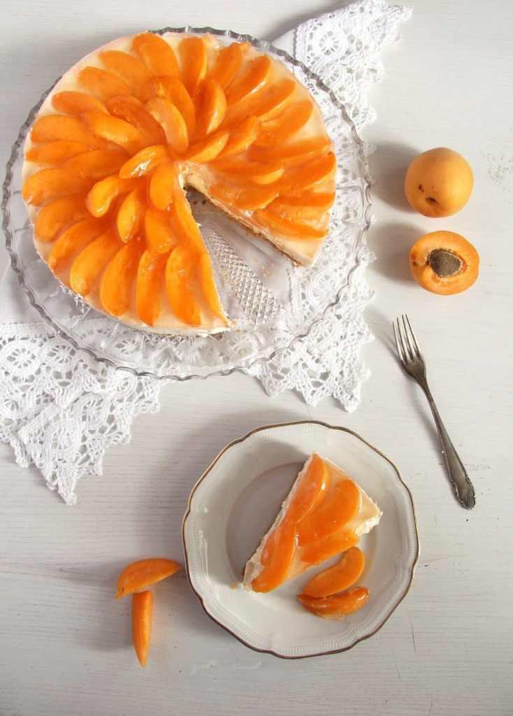 apricot cheesecake 734x1024 Creamy White Chocolate Apricot Cheesecake