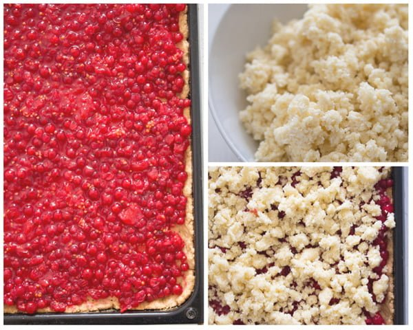 red currant streusel cake 1 Easy Streusel Cake with Red Currants and Coconut – German Food