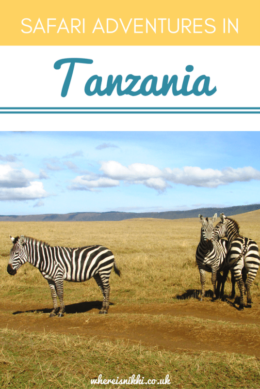 Check out Part 1 of my safari adventures in Tanzania