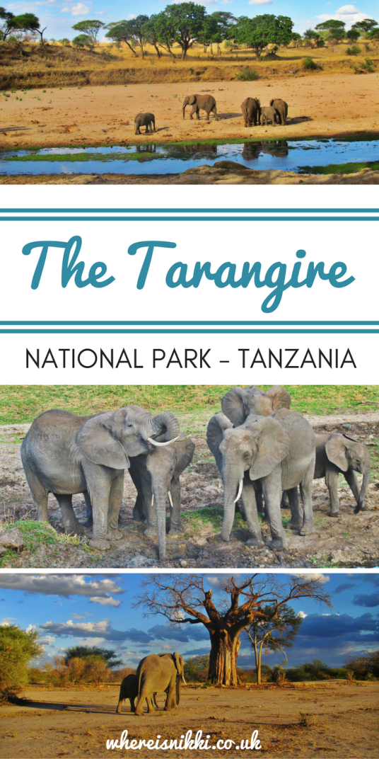Photo Tales from The Tarangire