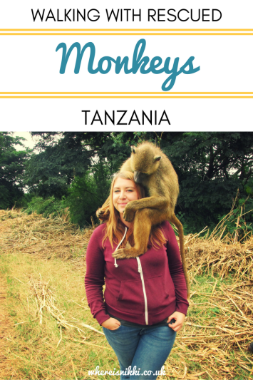 Photo Diary - Walking With Monkeys in Tanzania