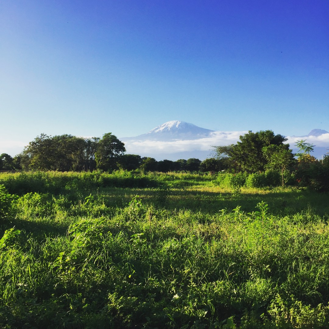 When Is The Best Time To Visit Tanzania?
