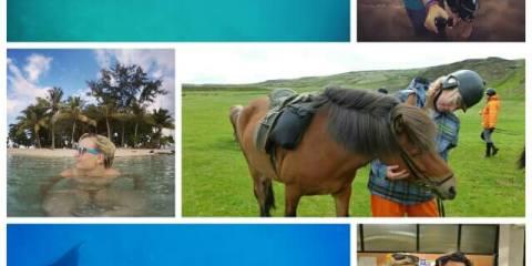 2014 travel blog roundup where is tara