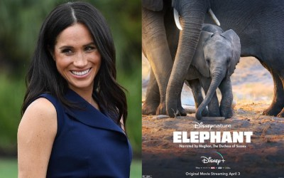"""First Listen of Meghan Markle, The Duchess of Sussex Voicing """"Elephant"""" A DISNEYNATURE FILM"""