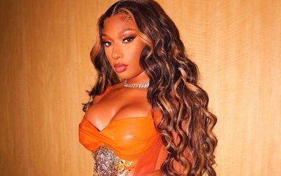 Everything You Need To Know About Megan Thee Stallion and Popeyes Collaboration