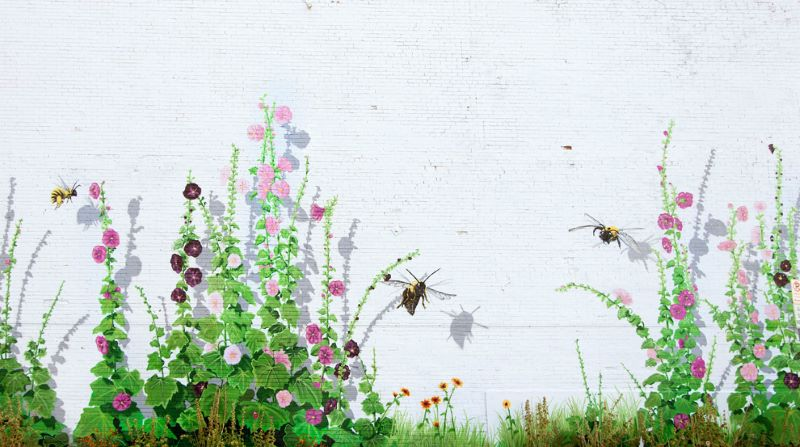 Mural featuring hollyhock flowers in various shades of pinks and purples and bees buzzing about. Mural is located in Laramie, Wyoming and is part of the Laramie Mural Project.