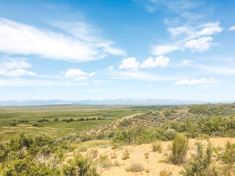 Grassy plain in Laramie Wyoming with mountain range in the background and blue skies overhead.