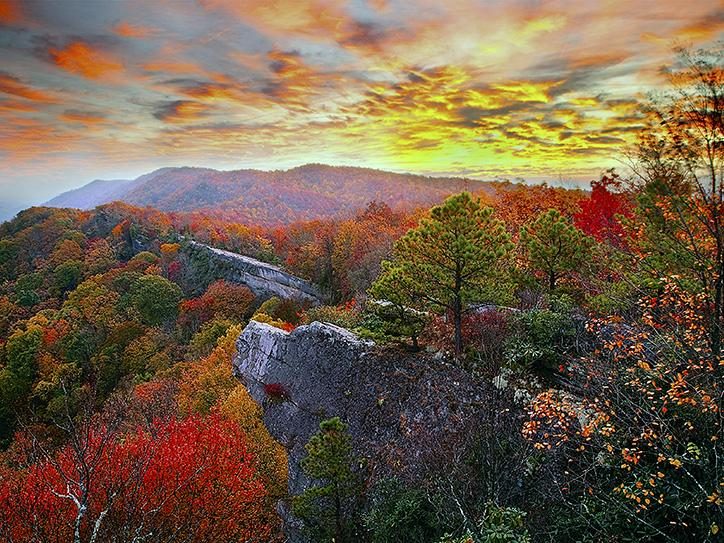 Stunning treetops in green, red, and yellow along with rocky outcrops along the Pine Mountain State Scenic Trail in Eastern Kentucky. Kentucky is a wonderful place to see changing fall colors.